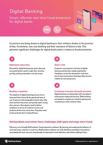 ng-cover-datasheet-digital-banking